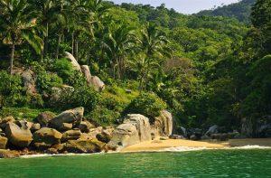 Experience a Natural Adventure in Puerto Vallarta