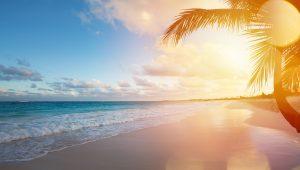 Puerto Vallarta and Riviera Nayarit Home to 8 Blue Flag Beaches